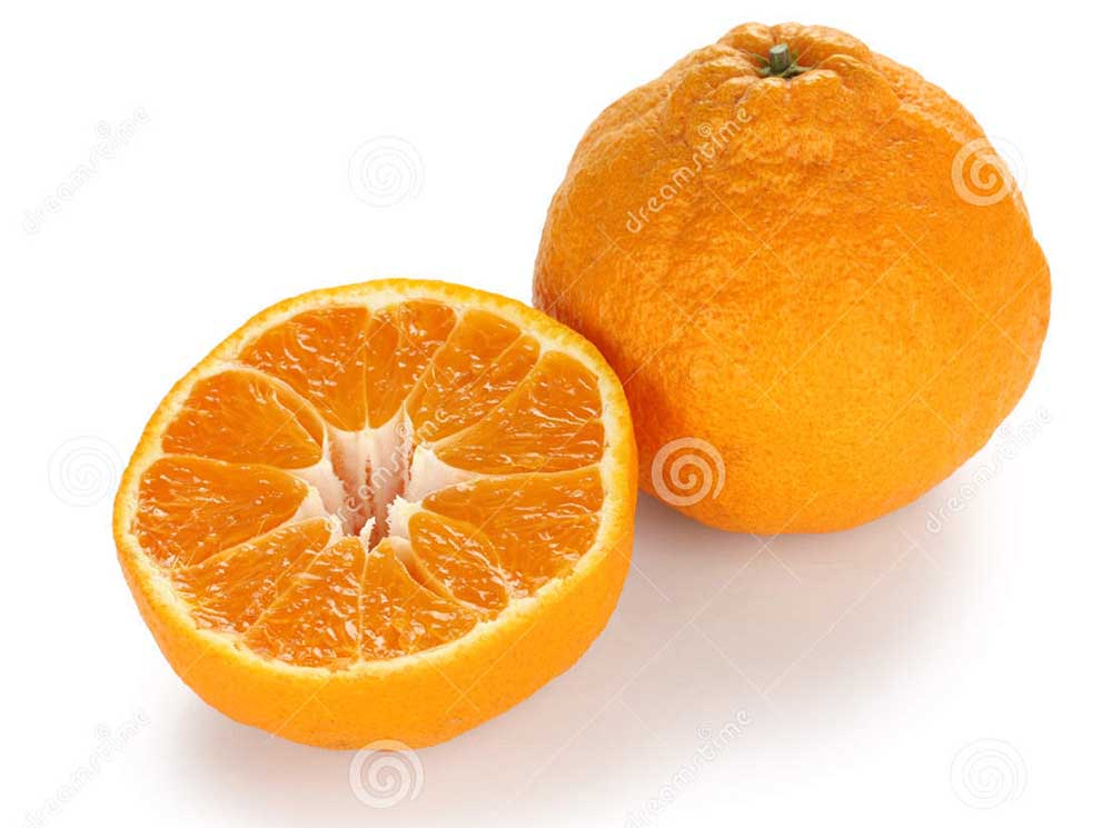 List of top ten expensive fruits