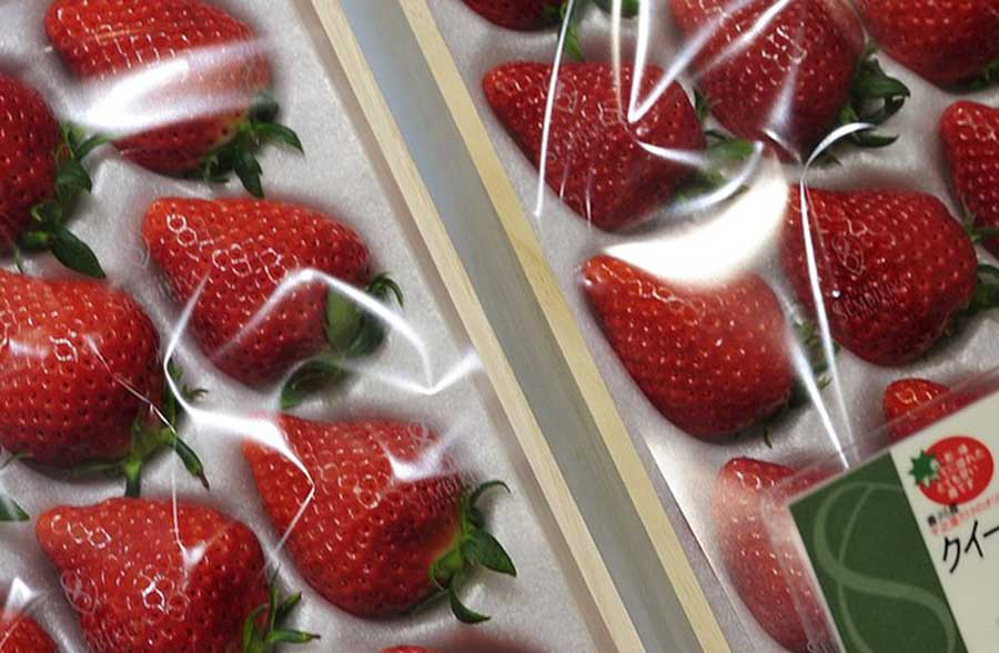 Ten most expensive fruits