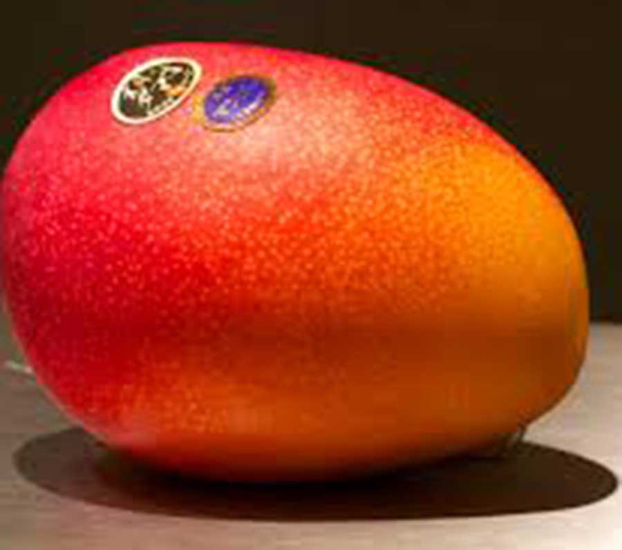 Most expensive fruits of the world