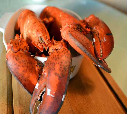 Most Expensive Seafood Dishes