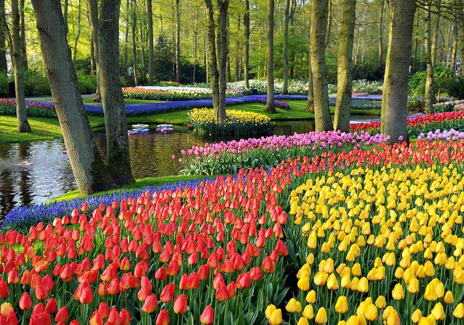 Top 10 Most Luxurious Gardens Around the World