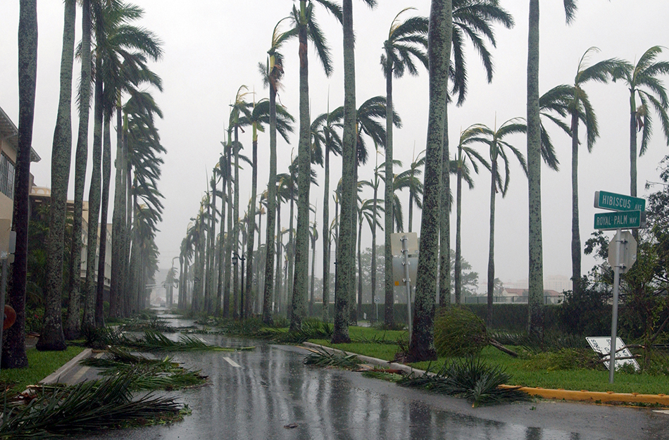 List of Top Ten Most Expensive Hurricanes in the US History