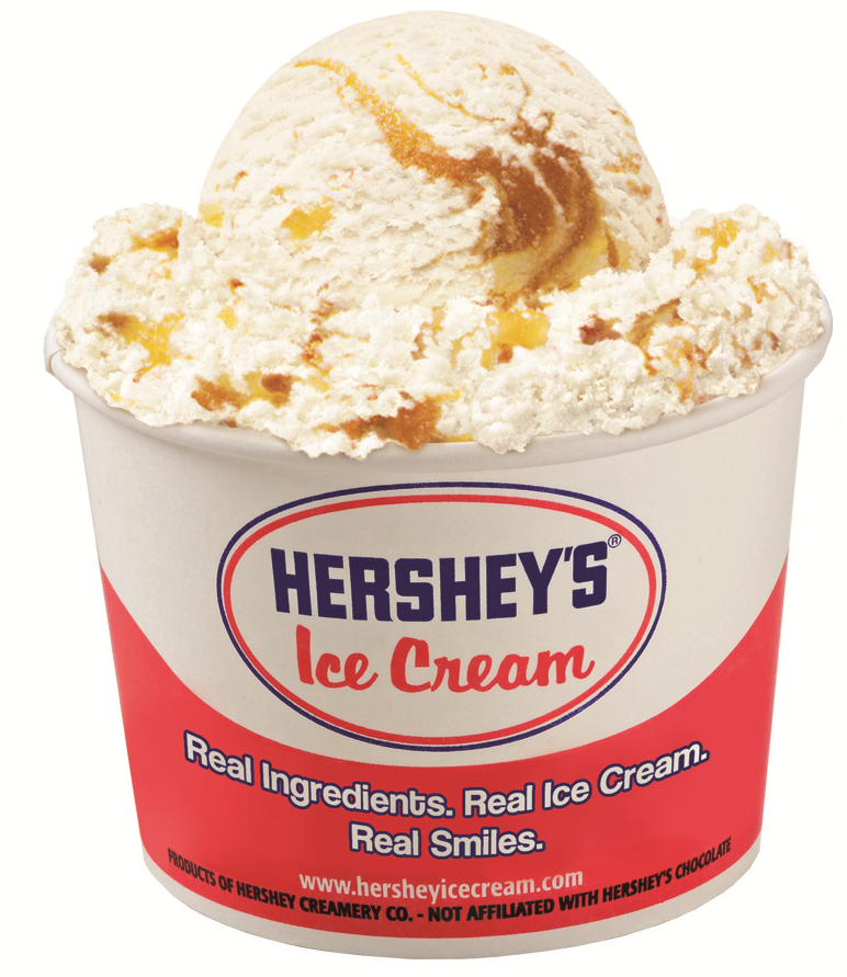 Top Ten Most Expensive Ice Cream Brands