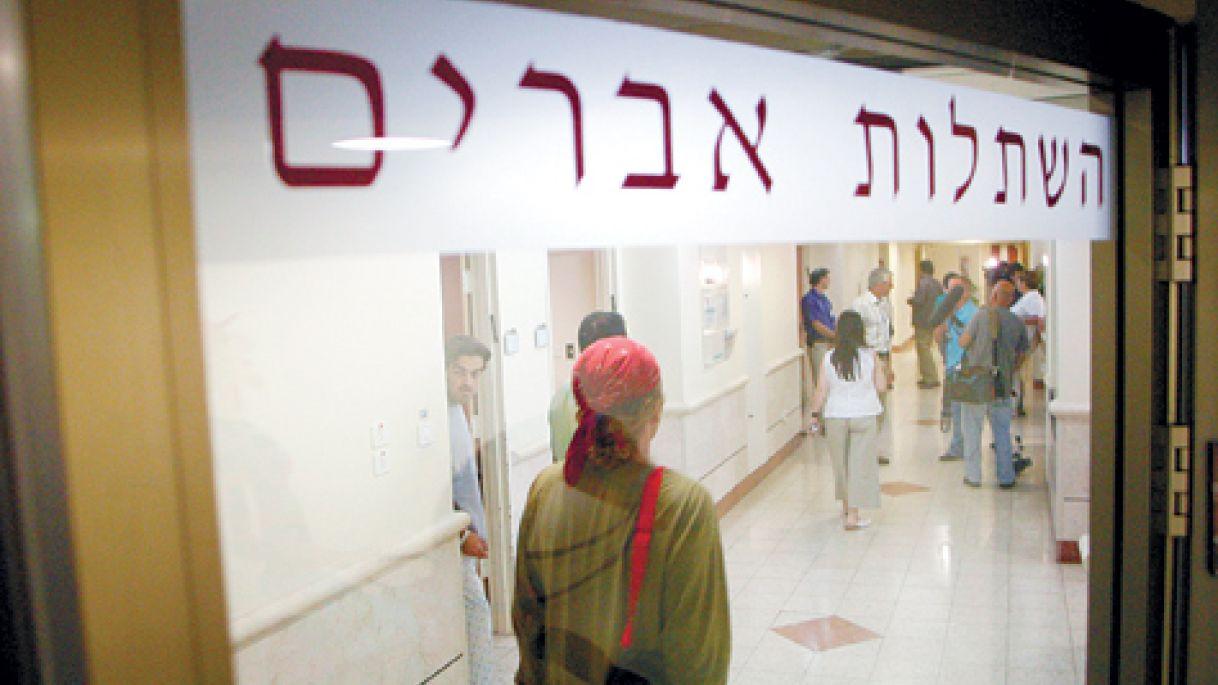 Kidney, Israeel