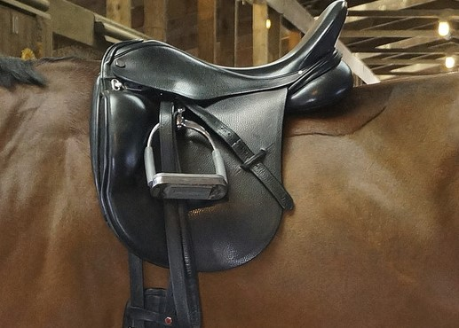 Top Best Jumping Saddles