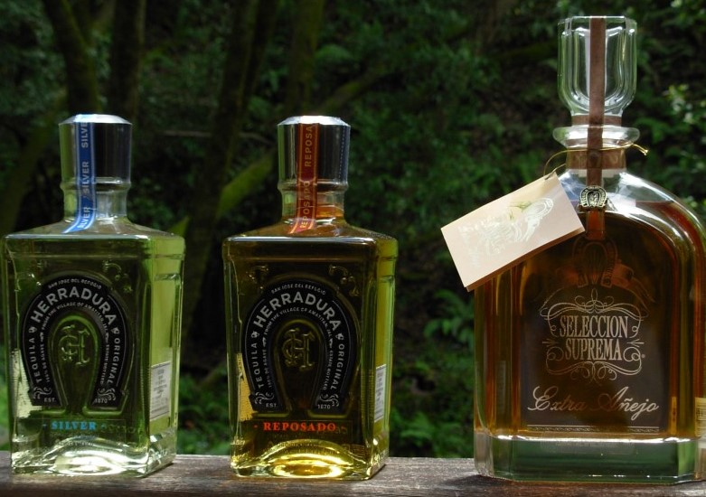 Top Most Expensive Tequila Bottles In The World