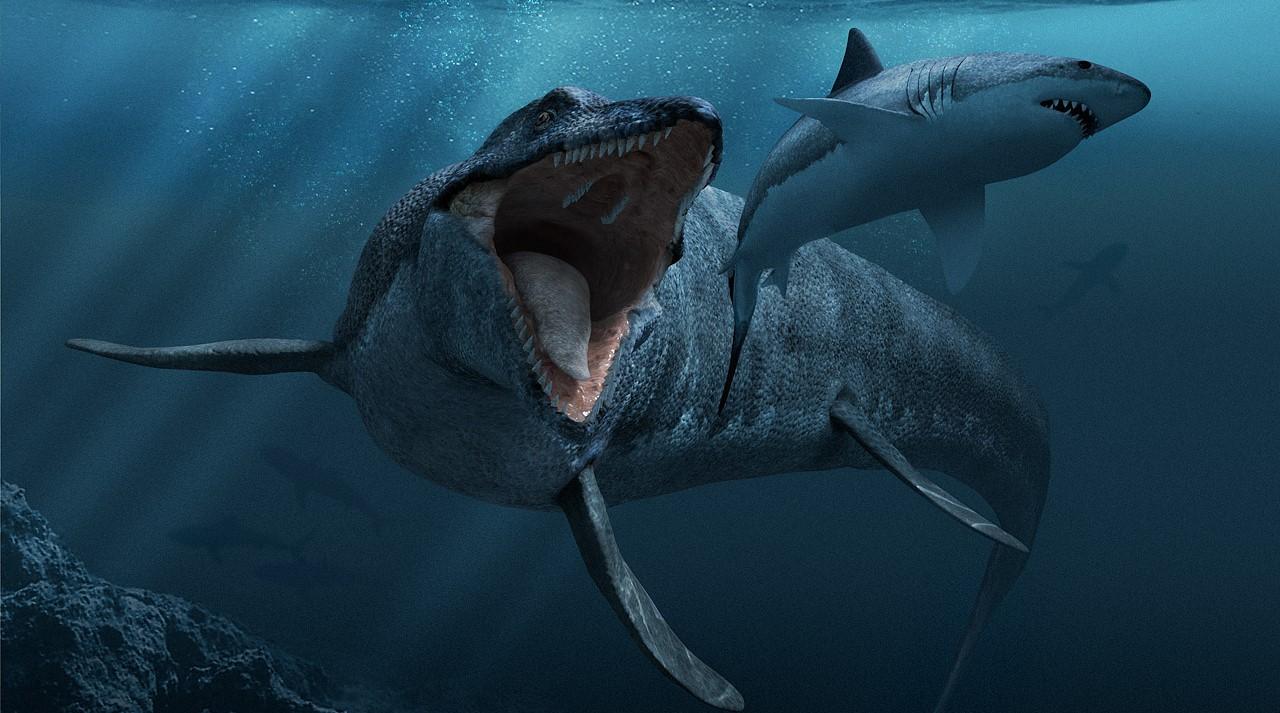 top most dangerous creatures