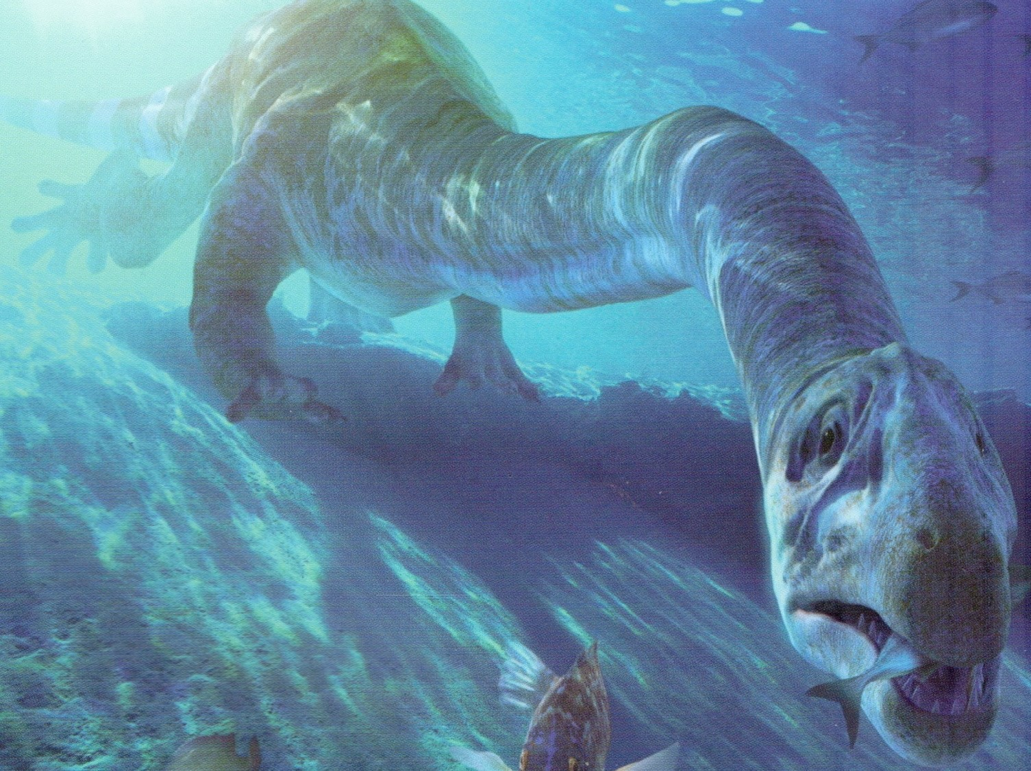 The Dangerous Sea Creatures Of All Times