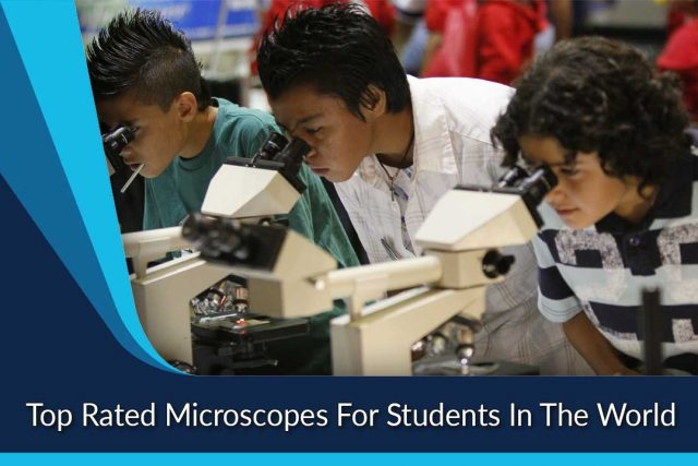 Top Rated Microscopes For Students In The World