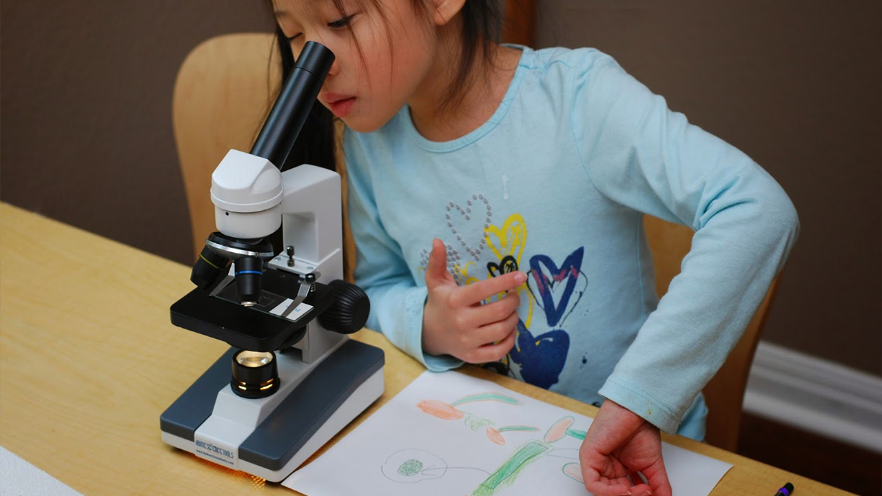 Best Microscopes For Students In The World Highly Rated