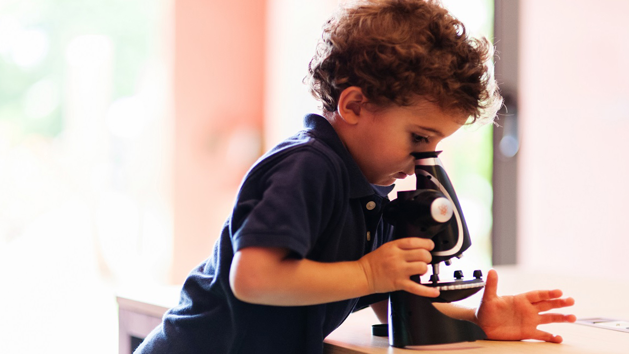 Top Rated Microscopes For Students