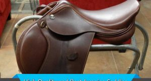 High Quality and Best Jumping Saddles